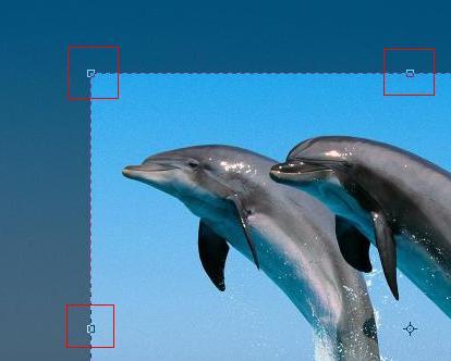 Photoshop - Auswahlrahmen Anfasser